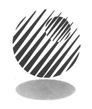 logo_shn41.jpg